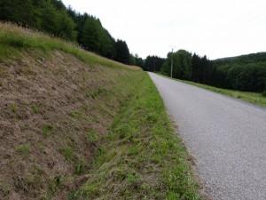 Un bord de route fauché début juin