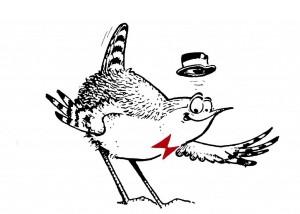 logo Oiseaux Nature