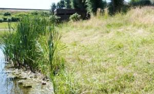 L'affût au plan d'eau de Remiremont