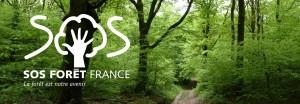 Logo SOS Forêt France