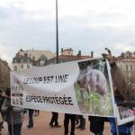 40 Manifestation contre les tirs de loups Lyon 16-01-2016