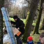 La pose des nichoirs dans les arbres, c'est l'affaire d'un adulte.