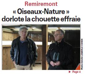 Oiseaux Nature dorlote la chouette effraie - Vosges Matin Une 07-02-2016