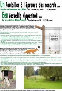 Un poulailler à l'épreuve des renards - Domaine des silex