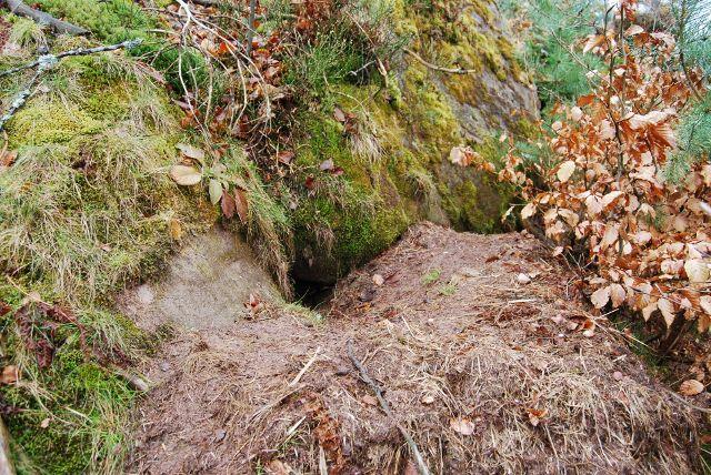 Un cône de déblais à l'entrée du terrier