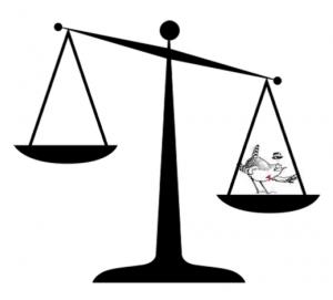 justice Ois Nat