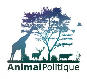 image-animalpolitique