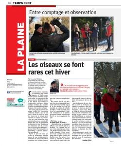 Les oiseaux se font rares cet hiver Vosges Matin 23-01-2017 ed la plaine