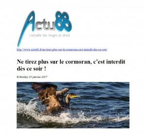 Ne tirez plus sur le cormoran c'est interdit dès ce soir - Actu 88 du 25-01-2017