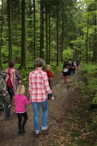 Sortie nature découverte de la forêt et ses habitants Val d'Ajol 17-05-2017