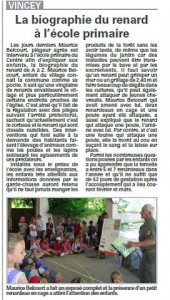 Vincey La biographie du renard à l'école primaire - Vosges Matin 18 juin 2013