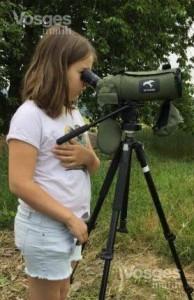 Deycimont A la découverte des oiseaux des villages - Vosges matin le 14-06-2018