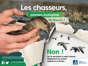 Les chasseurs premiers écologistes de France - chasse illégale des migrateurs - LPO 02-09-2018