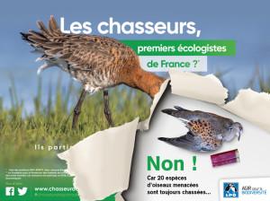 Les chasseurs premiers écologistes de France-oiseaux menacés chassés chasse - LPO 02-09-2018