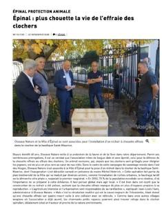 Epinal plus chouette la vie de l'effraie des clochers - Vosges Matin 18-10-2018