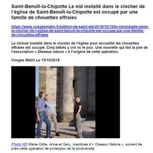 Le nid installé dans le clocher de l'église de Saint-Benoît-la-Chipotte est occupé par une famille de chouettes effraies-Vosges Matin 15-10-2018