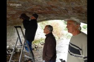 Si les cincles plongeurs ne sont pas au rendez-vous, les bergeronnettes de ruisseaux ne manqueront pas d'investir le nichoir-Vosges Matin 05-10-2018