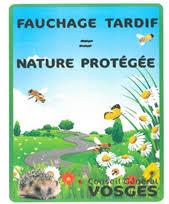 Fauchage tardif nature protégée CG Vosges