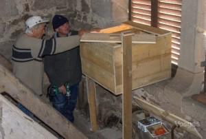 La Vôge-les-Bains Les chouettes effraies ont leur nichoir dans le clocher - Vosges Matin 26-05-2019