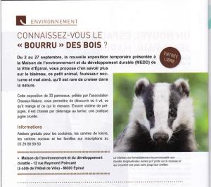Connaissez-vous le bourru des bois - Vivre à Epinal n°382-Septembre 2019