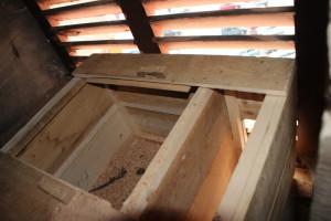 Nichoir dans le clocher de l'église du Val d'Ajol 1 - Janvier 2020