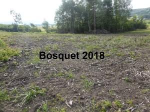 Bosquet 2018