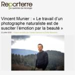 https://reporterre.net/Vincent-Munier-Le-travail-d-un-photographe-naturaliste-est-de-susciter-l-emotion-par-la-beaute