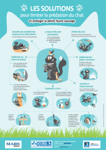 Affiche des solutions pour limiter la prédation du chat et protéger la petite faune sauvage - LPO 2019