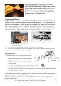 Le piégeage une pratique cruelle pour nos animaux SVPA2-2015