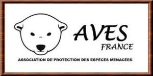 Association AVES