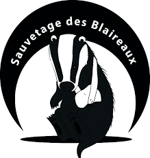 Logo association Meles
