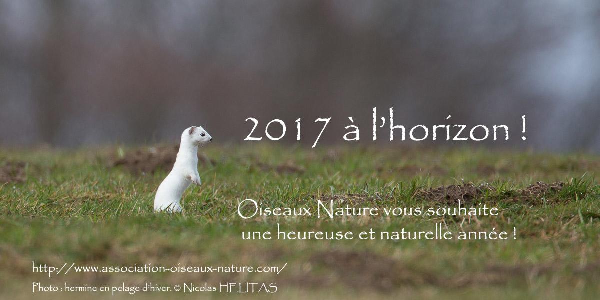 Vœux Oiseaux Nature 2017