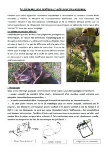 le piégeage une pratique cruelle pour nos animaux SVPA1-2015