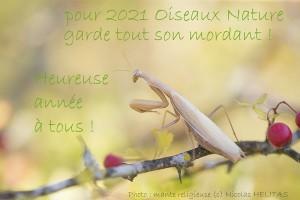 Vœux Oiseaux Nature 2021