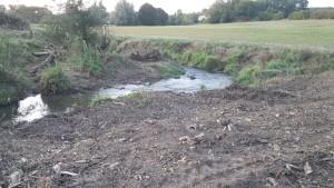Destruction de la ripisylve et sol défoncé sur le Durbion 2019