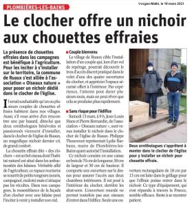 Plombière les Bains Le clocher offre un nichoir aux chouettes effraies - Vosges Matin 18 mars 2021