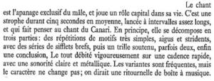 Le troglodyte mignon - Paul Géroudet