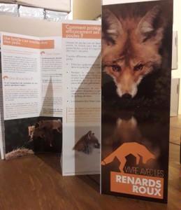 Plaquette Vivre avec les renards roux du Collectif Renard Grand Est - Janvier 2021