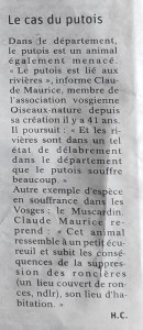 Le déclin du putois et du muscardin - Vosges Matin 22-05-2021
