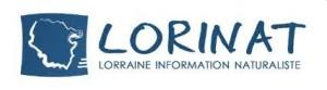 Lorinat