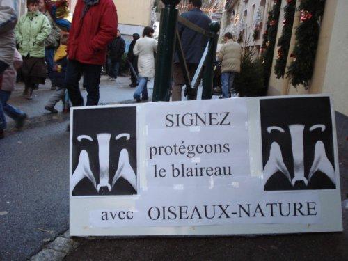 Blaireau-Signez la pétition