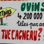 37 Manifestation contre les tirs de loups Lyon 16-01-2016