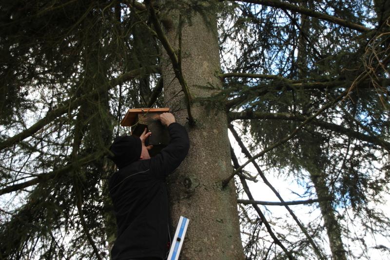 Pas n'importe comment : pas de clous dans l'arbre, mais un fil de fer qui ne blesse pas l'arbre et puis il ne faudrait pas que le nichoir tombe avec les petits à l'intérieur, donc il doit être fixé solidement.