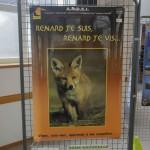 Les renards à l'Assemblée Générale Oiseaux Nature 2017
