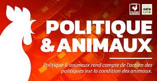 Logo Politique & Animaux