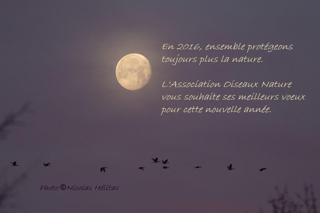 Vœux Oiseaux Nature 2016