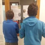 Exposition renard au collège de Plombière les bains - Mars 2021